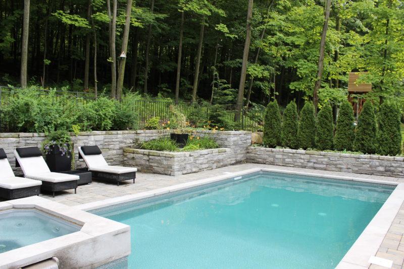 Espace détente et écran d'intimité avec des conifères et des buis en bordure d'une piscine creusée contemporaine par Ladouceur